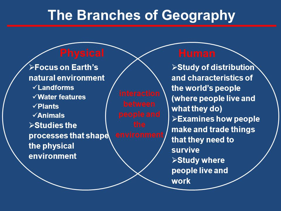 Geography The Branches